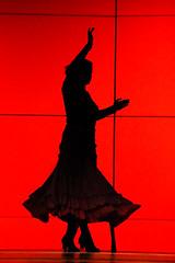 The Salsa Dancer (mmockingbird) Tags: ballet dance student dancer bellydance hip hop 2014 brynmawrcollege