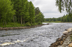 4Y1A1935 (Ninara) Tags: suomi finland kes kuhmo easternfinland pajakkakoski