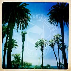 CALIFORNIA-684