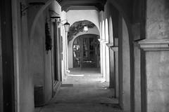 Cold Shadow On The Vine (kevinspencer) Tags: urban blackwhite sedona tlaquepaque 2014