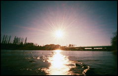 il sole (Roberto Messina photography) Tags: italy color film nature analog xpro crossprocessed january pinhole analogue zeroimage asti zero69 2015 fujivelvia100f