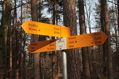 Wegweiser Simmesteg ( BE - 610m => Standorttafel Berner Wanderwege ) bei Wimmis im Berner Oberland im Kanton Bern in der Schweiz (chrchr_75) Tags: del schweiz switzerland site suisse map hiking swiss plan du trail bern christoph svizzera mappa berne wandern berner januar sito berna hikingtrail tafel wanderweg wegweiser suissa 2015 markierung 1501 standort kanton chrigu wanderwege janaur kantonbern bärn wanderwegweiser chrchr hurni chrchr75 chriguhurni wanderwegmarkierung bernerwanderwege standorttafel sidkarta sivustokartta albumstandorttafelsammlung chchr chriguhurnibluemailch januar2015 hurni150115 albumzzz201501januar