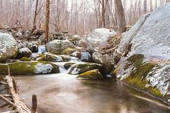 A Creek. (TheRobbStory) Tags: longexposure winter color digital river landscape virginia moss voigtlander boulder va 3514 oldragmountain vsco sonya7 vscofilm robbhohmann