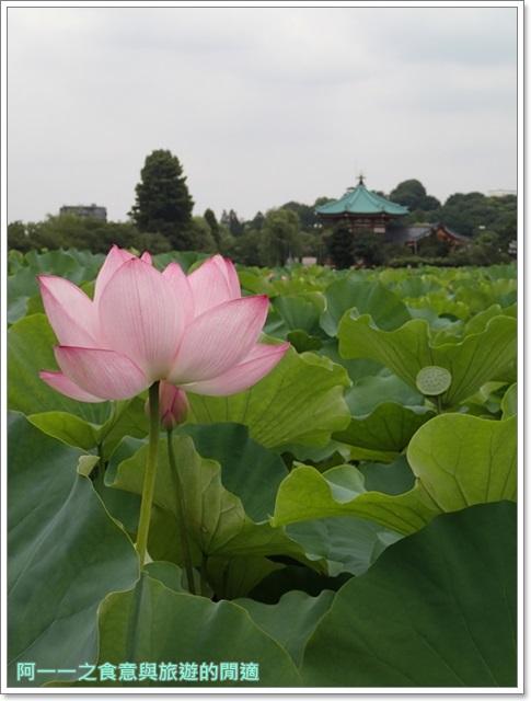 東京自助旅遊上野公園不忍池下町風俗資料館image016