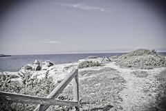 (Moretti Matteo) Tags: road sea summer italy sun fall texture mystery strada italia mare august unknown sole terra puglia gemelle orso stradina 2014 battuta sorelle