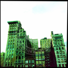 NEWYORK-1446