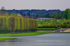 Versailles - 62 le long du Grand Canal dans le parc du Chteau de Versailles (paspog) Tags: park france castle spring versailles april schloss avril chteau parc printemps grandcanal castel frhling 2016 parcduchteau