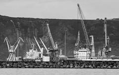 Gruas (Oscar F. Hevia) Tags: espaa port puerto dock spain barco ship power gijn asturias cargo cranes strength machines dique stevedoring maquinas potencia gruas asturies xixn fuerza cargero elmusel principadodeasturias estiba