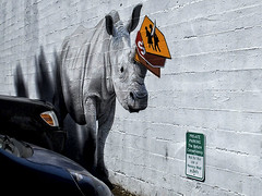 2016-05-12  To think I saw this on Morrison St. (Mary Wardell) Tags: signs wall oregon portland mural rhino rhinoceros odc