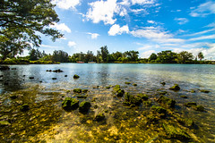 Paradise (borrowborrow20) Tags: water clouds landscape outdoors hawaii bay scenery paradise serene bigisland tranquil