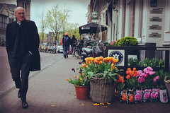 Amsterdam tulips (leoalmere) Tags: street flowers netherlands amsterdam tulips