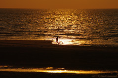 Belgian coast (Natali Antonovich) Tags: sunset sea portrait reflection nature water bike silhouette landscape seaside horizon lifestyle northsea romantic parallels relaxation seashore seasideresort romanticism belgiancoast wenduine seaboard