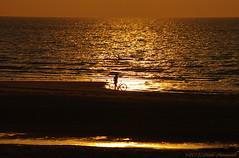 Belgian coast (Natali Antonovich) Tags: sunset sea portrait reflection nature water bike silhouette landscape seaside horizon lifestyle northsea romantic parallels relaxation seashore seasideresort romanticism belgiancoast wenduine seaboard