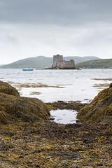 Castlebay, Isle of Barra (baltibob) Tags: barra castle castlebay coast hebrides isleofbarra kisimulcastle other outerhebrides sea seaweed scotland unitedkingdom
