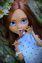 PicsArt_06-29-08.01.05 (Cleo6666) Tags: monster high doll ooak custom mattel repaint clawdeen monsterhigh frightfullytallghouls clawdeen17