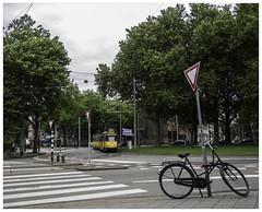 Heel gewoon ... (Harry -[ The Travel ]- Marmot) Tags: holland nederland netherlands dutch hollands nl amsterdam mokum stadsarchief stad city urban stedelijk stads allrightsreservedcontactmebyflickrmail museumtram tram streetcar tramm tramvaiul tramvay tramwaj tramwaje tranvia strasenbahn strassenbahn tramways tramvie tranvias trams tramway openbaarvervoer publictransportation transport rail historic railway bike bicyclette bicycle zebrapad voetgangersoversteek ema httpmuseumtramlijnorg electrischemuseumtramlijnamsterdam