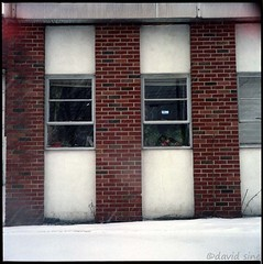 (david sine) Tags: linden nj newjersey snow window brick building flowers stuff things yashica yashicaa tlr twinlensreflex mediumformat 120 color kodak portra film scannednegative