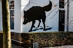 The wolf (ericbaygon) Tags: wolf loup vlissingen holland paysbas tag dessin faade mur wall d300s nikon nikonpassion street rue maison house urban urbain drawn peinture paint