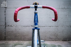 IMG_8779 low (_cool79) Tags: roma fixedgear brakeless scattofisso fixedlife