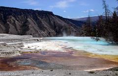 Hot Springs Falloff (Shammy Dee) Tags: park travel nature landscape yellowstone hotsprings