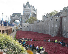 Blood Swept Lands And Seas Of Red by ceramic artist Paul Cummins (Sunrise Calls) Tags: red london remember poppies worldwarone tribute firstworldwar toweroflondon commemoration