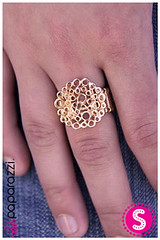 740_ring-goldkit1june-box040