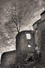 Schloss Rathsmannsdorf (Kurt Haberl) Tags: bw castle forest ruine sw monochrom schloss wald passau bavarian burgruine bayerischer landkreis windorf rathsmannsdorf