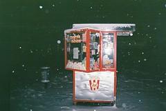 F1010018 (coveks) Tags: park winter fish snow film night 35mm dark golden popcorn belgrade zima beograd no sneg tamajdan zlatna ribica kokice