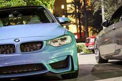 BMW meet 2014-11-12 M3 F80