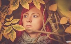 Sarah (ikopix) Tags: autumn portrait woman tree girl nice nikon sweet herbst headshot nikkor redhair nikkor50mm18 d7100 ikopix