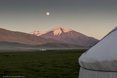 Full Moon over the Glacier (www.davidbaxendale.com) Tags: moon mountain glacier full mongolia ger altai