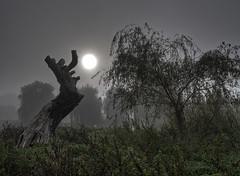 Mist & Sunrise 1 (Wormsmeat) Tags: mist sunrise five arches