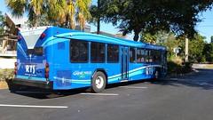 2014 Gillig LowFloor #1401 (abear320) Tags: bus florida gainesville system transit rts gillig regional