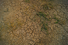 Dry & Thirsty    (haidarism (Ahmed Alhaidari)) Tags: water ngc dry drought thirsty