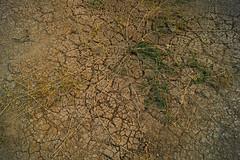 Dry & Thirsty جفاف و عطش (haidarism (Ahmed Alhaidari)) Tags: water ngc dry drought thirsty ماء جفاف عطش