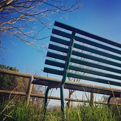 Lo spettacolo pi bello resta il... (simoneaversano) Tags: park nature garden bench poetry bluesky natura poesia benches deadwood clearsky urbanscape emptybench benevento urbanphotography naturephotography atthepark barebranches panchina naturelovers fromtheground poetography alparco natureseekers uploaded:by=flickstagram whpwordstoimages igbenevento instagram:venuename=benevento2citaly instagram:venue=216866043 walkingbenevento instagram:photo=874907891517560412247096476 greeenlawn