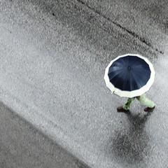 lluvia (archifra -francesco de vincenzi-) Tags: street blue italy man verde green rain azul umbrella square lluvia italia pluie vert bleu uomo pioggia paraguas hombre homme ombrello carré parapluie molise isernia зеленый дождь синий человек sagoma μπλε ilpleut βροχή зонт ομπρέλα άνθρωποσ πράσινοσ archifraisernia francescodevincenzi