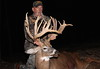 Michigan Whitetail Hunt 21