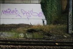 Neka / Sone PWS / Aktone (Alex Ellison) Tags: urban graffiti boobs tag railway sone line graff tfw trackside northlondon tbf neka pws 1t nekah neks aktone akt1 paintwasters thebufffails