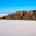 Salar de Uyuni: Incahuasi island