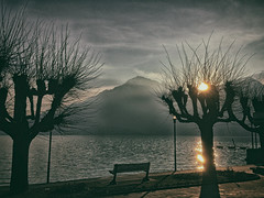 New day on Como Lake (iPhone shot) (Sconsiderato) Tags: street sunset shadow sky panorama sun lake streets tree apple water sunshine alberi clouds dark lago landscapes amazing strada nuvole shadows shot cloudy alba cell cellular cielo sole acqua iphone scuro nubi panorami modifiche mywinners sconsiderato uploaded:by=flickrmobile