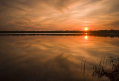 Burning Sky (Moustafa Kzaiha) Tags: sunset sky orange sun sunlight reflection nature water grass silhouette clouds germany landscape mirror sony burning ilce7