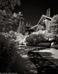 Historic Tacoma 4 (mjardeen) Tags: flowers trees houses homes yards blackandwhite bw white black garden landscape ir washington conversion outdoor path sony 28mm walkway infrared wa converted f2 tacoma fe bushes shrubs northslope 282 a7ii 720nm lifepixel landscapesshotinportraitformat a7m2 tonalitypro ilce7m2