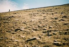 (Fellhunter) Tags: greatbritain travel mountain wales 35mm walking landscape photography nationalpark view britain hiking cymru olympus tourist walker 35mmfilm snowdon british hiker welsh analogue rambler snowdonia rambling 35mmphotography olympusom10 northwales travelphotography analoguecamera highestmountain analoguephotography originalphotography snowdonrangerpath snodonianationalpark photographersoftumblr