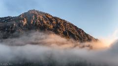 Out of the Mist (MC-80) Tags: mist mountain out austria tirol sterreich haze nebel tyrol mountaintop sonnenlicht nebelstimmung outofthemist