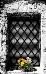 Siena Window (beelzebub2011) Tags: flowers bw italy window monochrome tuscany siena selectivecoloring