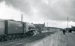 img751 (OldRailPics) Tags: steam kingfisher british locomotive railways laurencekirk 60024