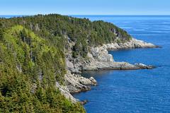 The Coast (Ron Scubadiver's Wild Life) Tags: sea sky canada nova forest nikon rocks trail coastal cape scotia cabot breton 24120