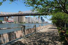Along the pathway to Four Freedoms Park, Roosevelt Island. (ho_hokus) Tags: nyc newyorkcity newyork spring path manhattan eastriver rooseveltisland pathway 2016 fujix20 fujifilmx20