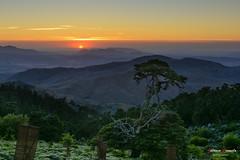 Atardecer desde Torrecilla. (Antonio Camelo) Tags: trees sunset sky naturaleza mountain sol nature night noche photo nikon montaa puesta